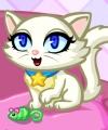 Purrfect Kitten Dress Up