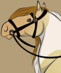 Robe Au Choix Horse Creator
