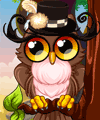 Cute Owl Dress Up Game
