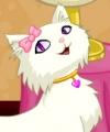 Catie the Cat